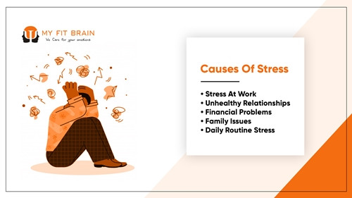 causes of stress - inforgraphic