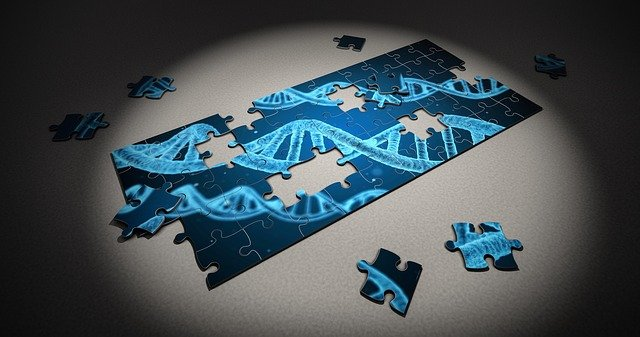 A picture showing DNA for genetic counselling